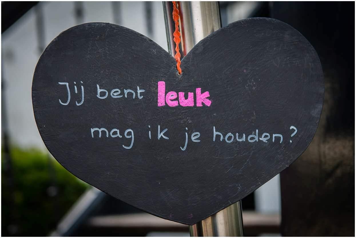 2015-09-04_Bruidsfotograaf_Slot Doddendael_Ewijk_Sander-Floor_Sandy-Peters_Bruidsfotograaf-Herpen_0032.jpg